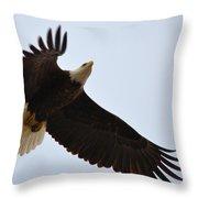 Flight Of Freedom Throw Pillow