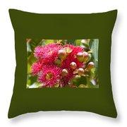 Flowering Gum W Ants Throw Pillow