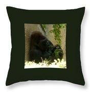 Gorilla Snacking Throw Pillow