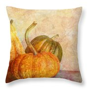 Gourd And Pumpkins II Throw Pillow