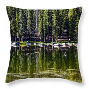 Granite Reflections  Throw Pillow