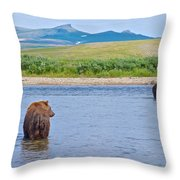 Grizzly Bears Looking At Each Other In Moraine River In Katmai Np-ak  Throw Pillow