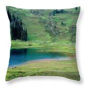 Image Lake Throw Pillow