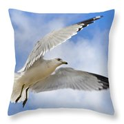 Jekyll Island Seagull Throw Pillow