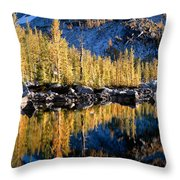 Larch Tree Reflection  Throw Pillow