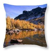 Larches Line Leprechaun Lake Throw Pillow