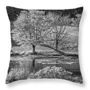 Long Pond On Mount Desert Island In Maine Throw Pillow
