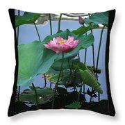 Lotus Flower At Calloway Throw Pillow