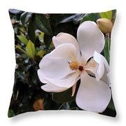Magnificent Magnolia Throw Pillow
