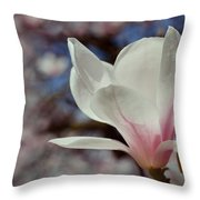 Magnolia Flowers In Spring Time Throw Pillow