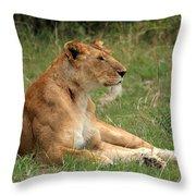 Masai Mara Lioness Throw Pillow