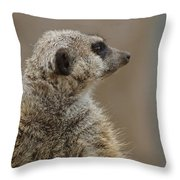 Meerkat Throw Pillow by Ernie Echols