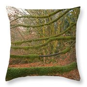Moss-covered Big Leaf Maple Branches Throw Pillow