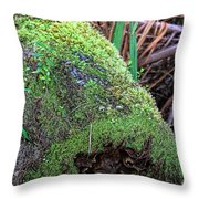 Mossy Dead Log Throw Pillow