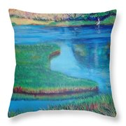 Myakka Sanctuary Throw Pillow