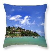 Naguabo Shoreline Throw Pillow by Thomas R Fletcher