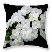 Oak Leaf Hydrangea Throw Pillow