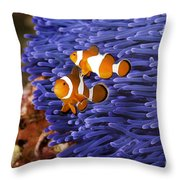 Ocellaris Clownfish Throw Pillow