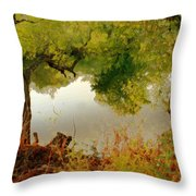 Old Country Throw Pillow