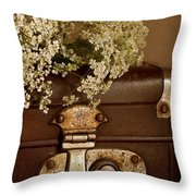 Old Suitcase Throw Pillow