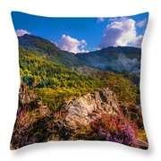 Overview Of The Loch Achray   Throw Pillow