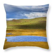Patagonian Lakes Throw Pillow