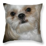 Peanut - 043 Throw Pillow