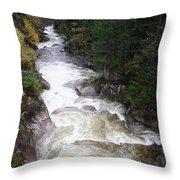 Pemigewasset River Franconia Notch Throw Pillow
