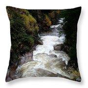 Pemigewasset River White Mountains Throw Pillow