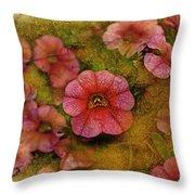 Pink Calibrachoa Photoart II   Throw Pillow