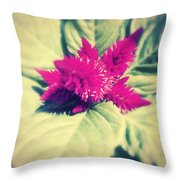 A Blister And A Kiss . Throw Pillow