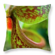 Pitcher Plants 2 Throw Pillow