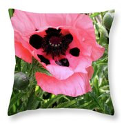 Poppy And Buds Throw Pillow