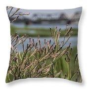 Purpletop Vervain Wildflowers Throw Pillow