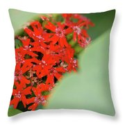 Red Butterfly Buds By Jammer Throw Pillow