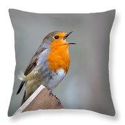Robin Song Throw Pillow