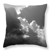 Seagulls In Flight Mb058bw Throw Pillow