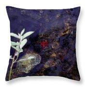 Semi Abstract Nature 2 Throw Pillow