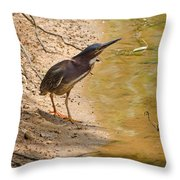 Shady Spot Throw Pillow