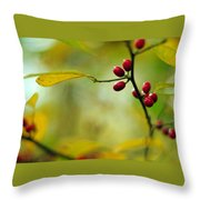 Spicebush With Red Berries Throw Pillow