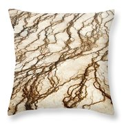 Spring Runoff Throw Pillow