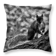 Squirrel In The Park V3 Throw Pillow