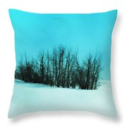 Still Of Cold  Throw Pillow