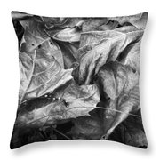 Sycamore Leaves In Autumn Throw Pillow