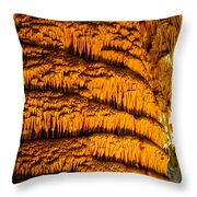 Temple Of The Sun Detail Throw Pillow