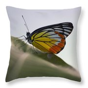 Thai Beauty On A Leaf Throw Pillow