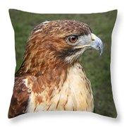 The Look Of A Predator Throw Pillow