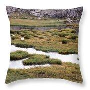 Titcomb Basin Marsh Throw Pillow