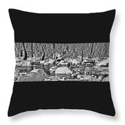 Tohickon Creek Throw Pillow