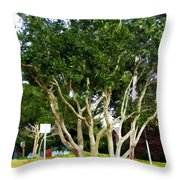 Trees In A Suburban Neighborhood In Summer Throw Pillow